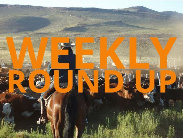 Weekly Blog Round Up